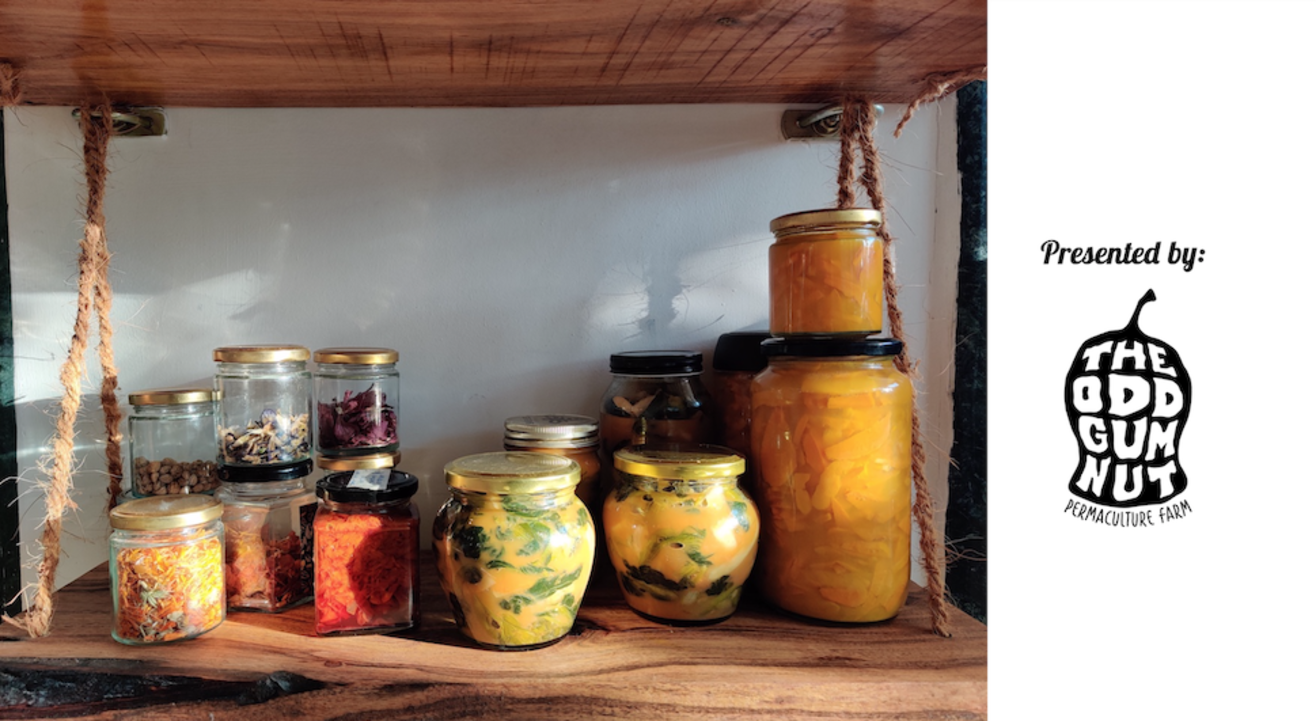 Easy Home Ferments