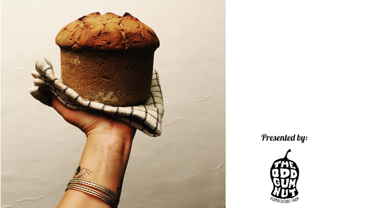 Sourdough bread and Other grain ferments