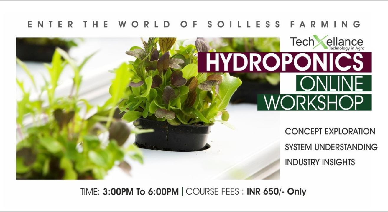 Basic Hydroponics Webinar
