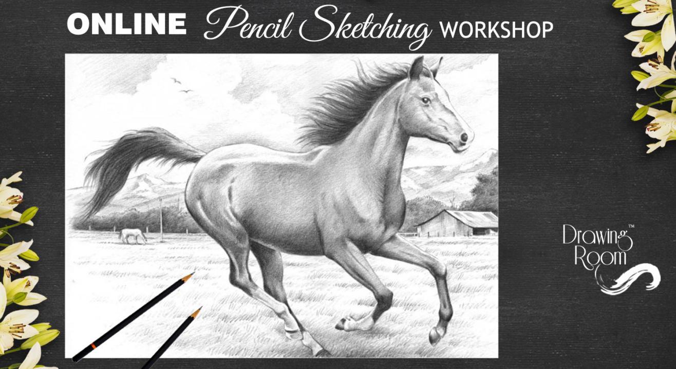 Online Pencil Sketching Workshop by Drawing Room