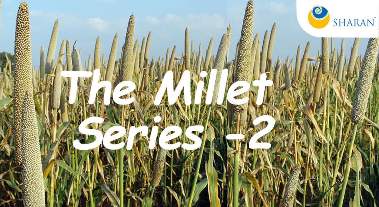The Millet Series -2