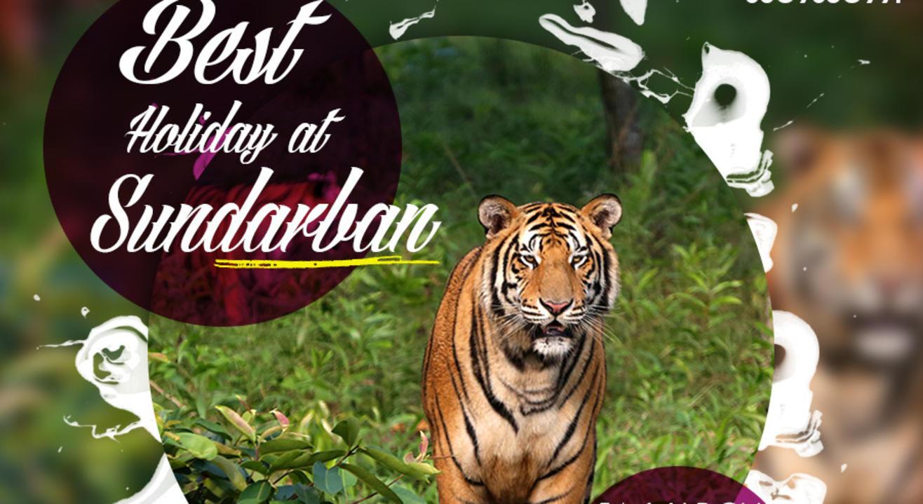 Puja Special Sundarban Tour