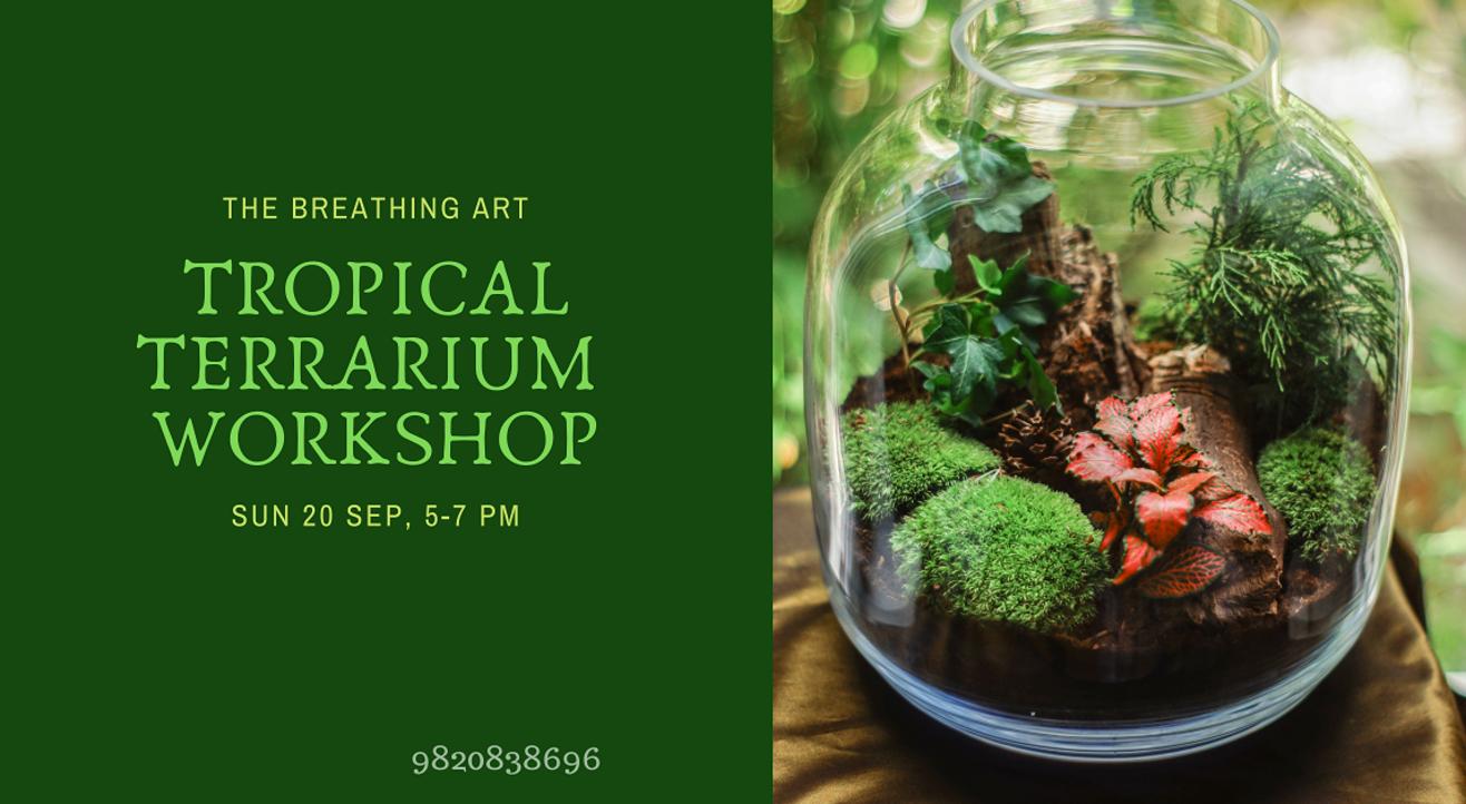 20th Sept Online Tropical Terrarium Workshop