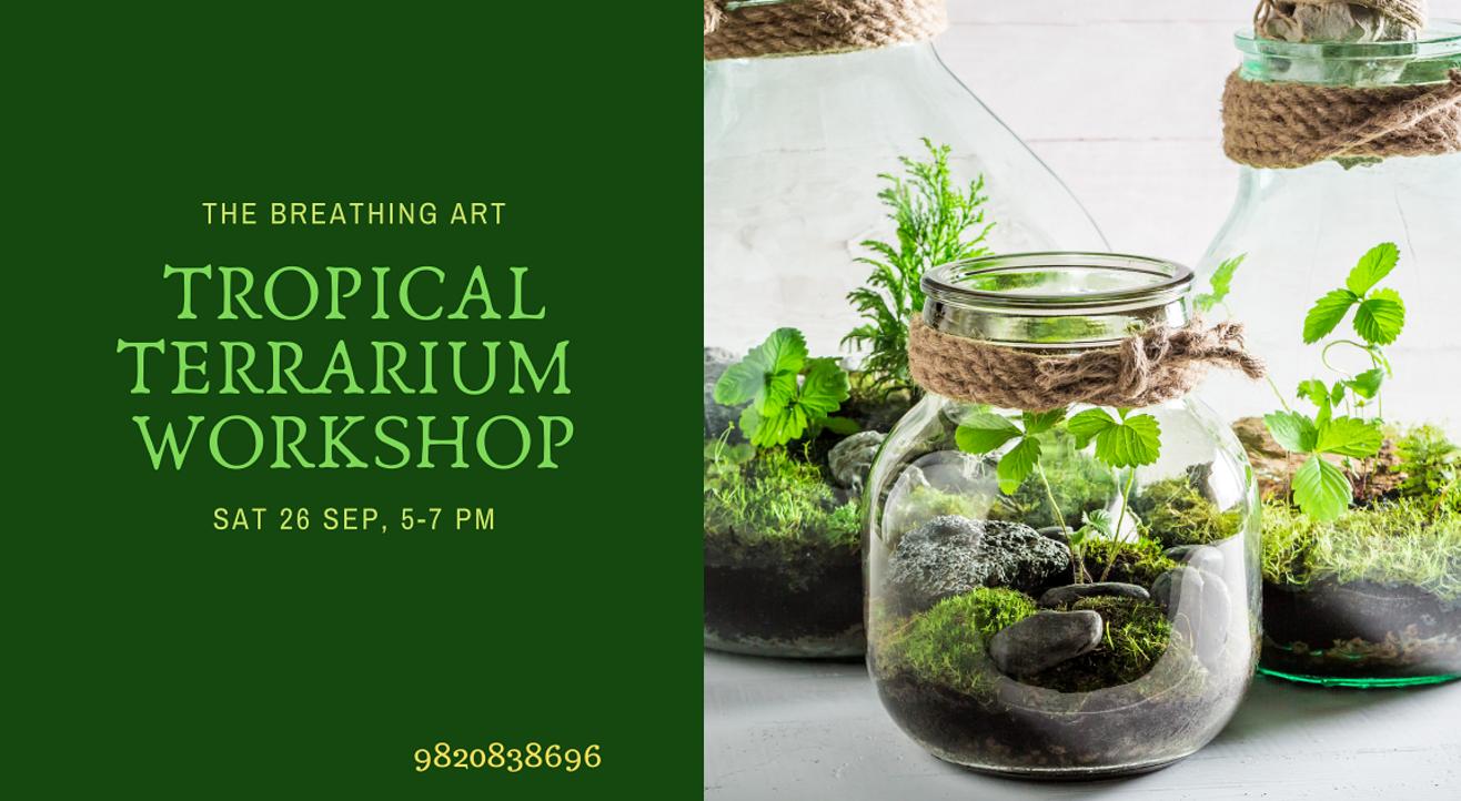 26th Sept Online Tropical Terrarium Workshop