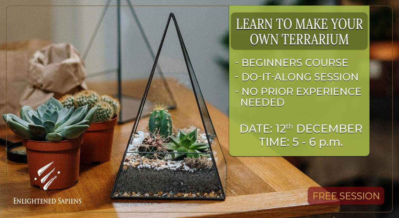 Learn to Make your own Terrarium