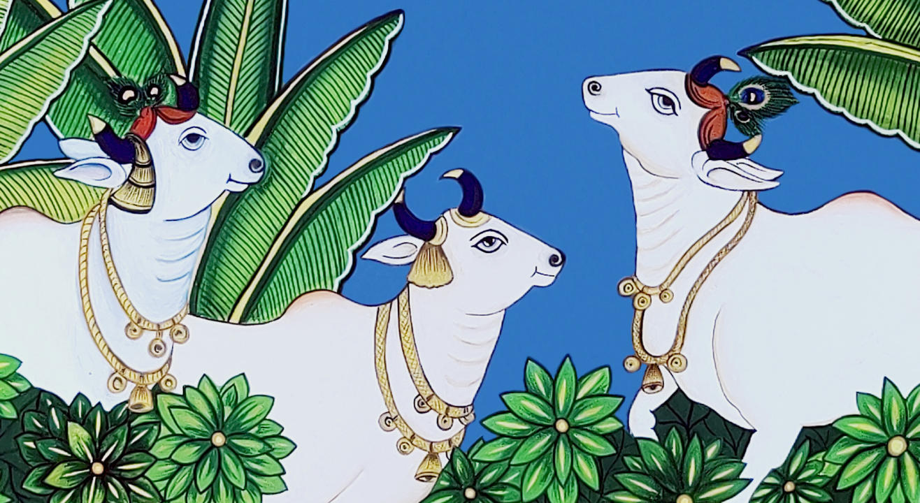 Cow Pichwai
