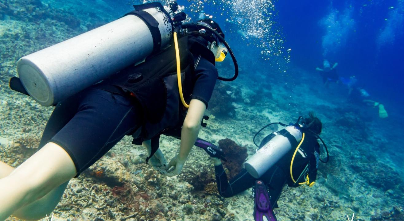 Scuba Diving + 5 Water Sports in Goa at Paradise Island
