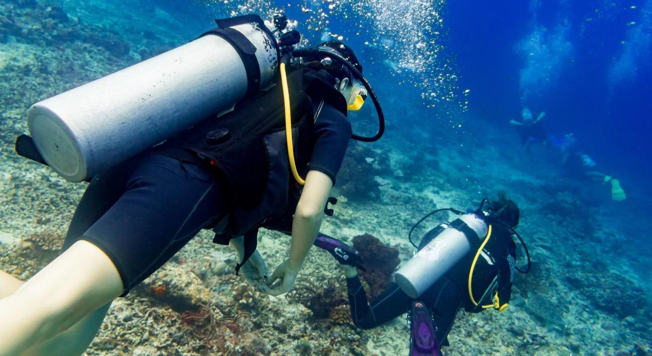 Scuba Diving at South Goa