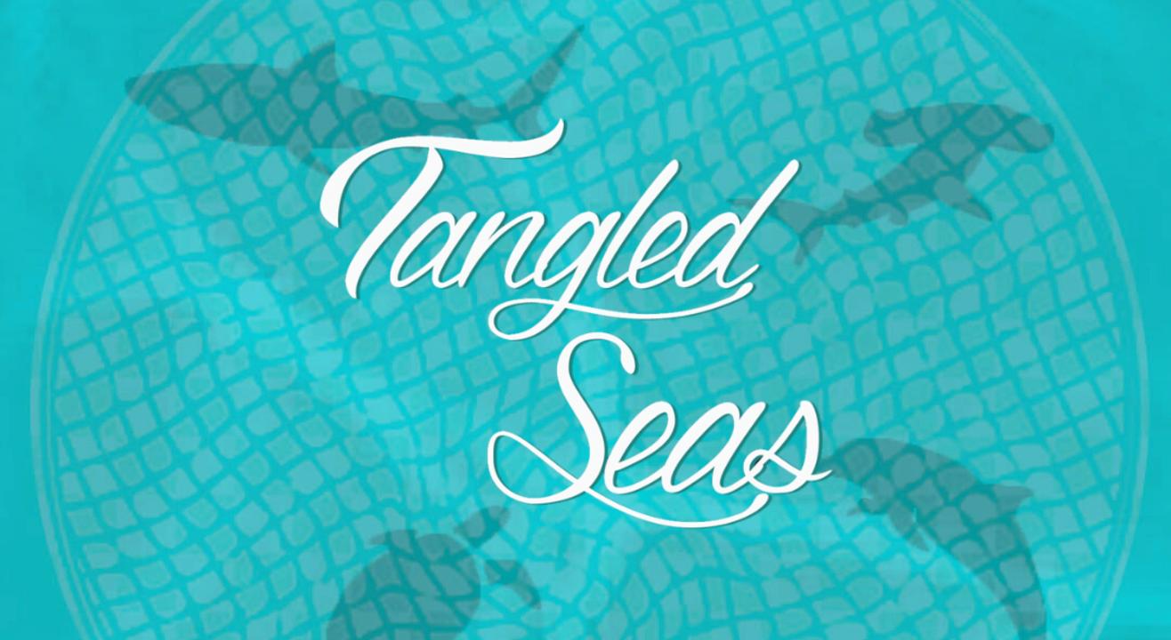 Tangled Seas