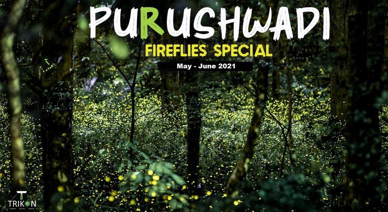 Purushwadi Fireflies 2021