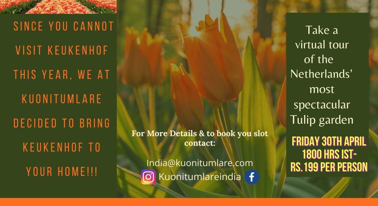 Virtual Tour of Worlds Biggest Tulip Garden- Keukenhof Gardens Netherlands!!!