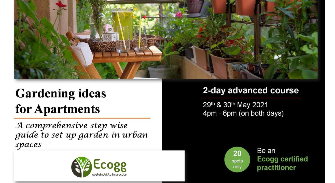 Gardening Ideas for Apartments