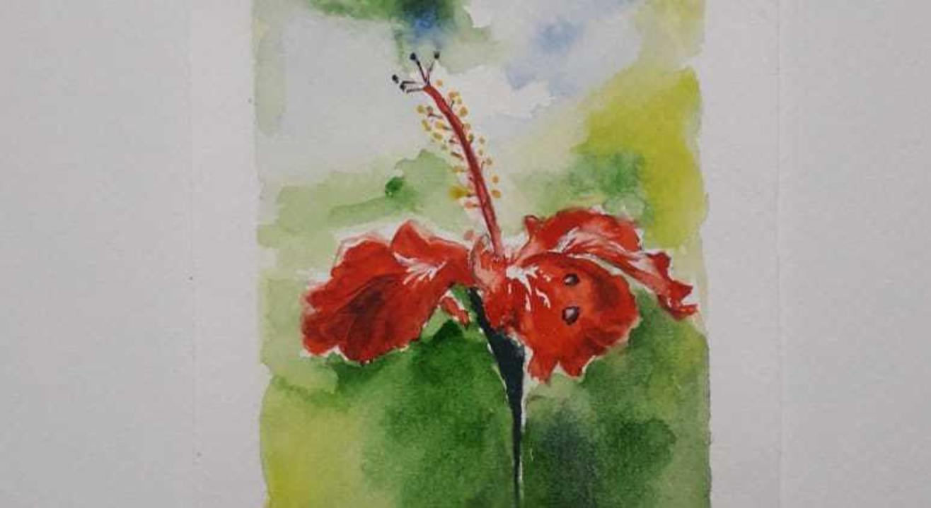 Watercolour for Beginners by Chittal