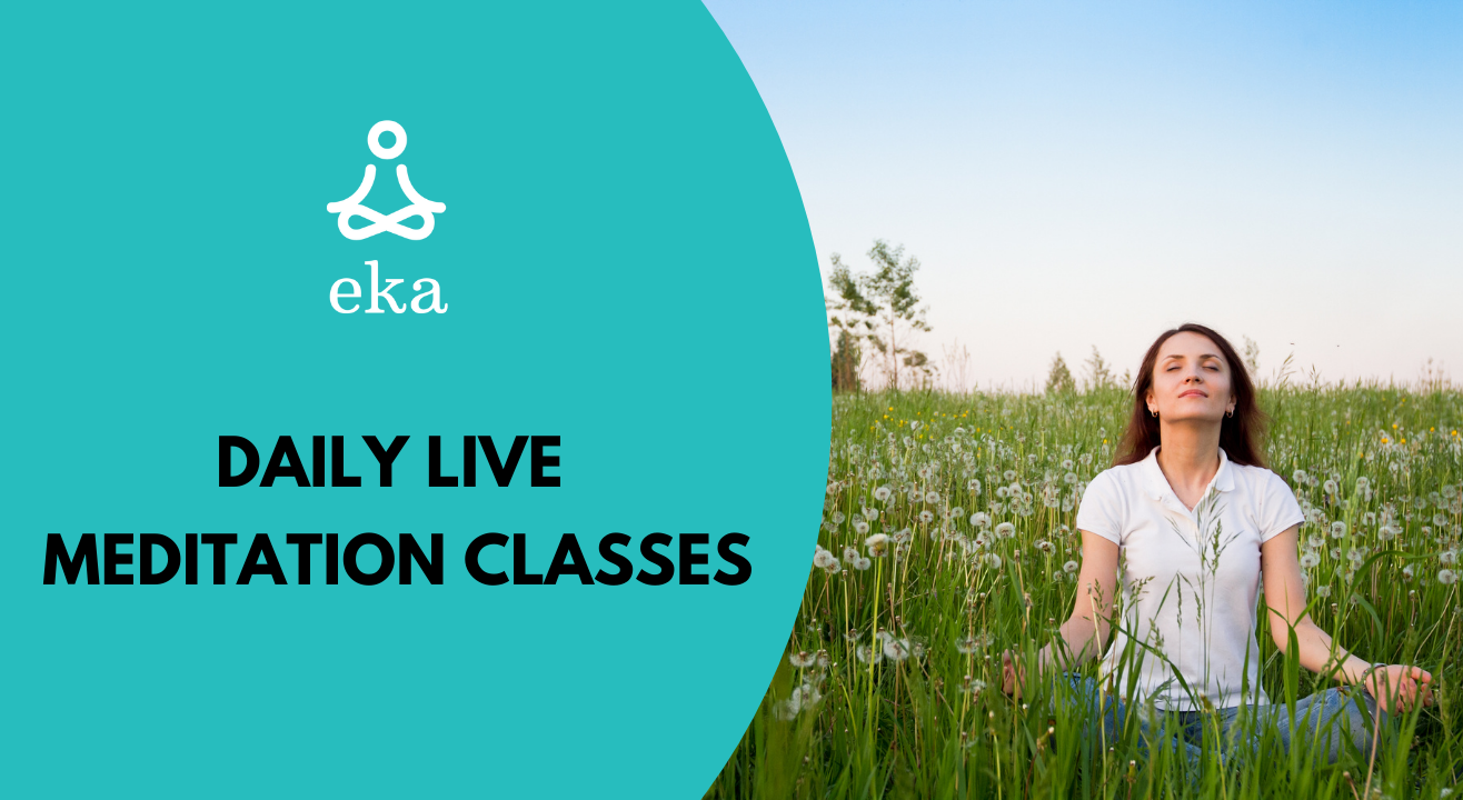 Daily live Meditation classes for beginners - 20 min (morning/evening slots)