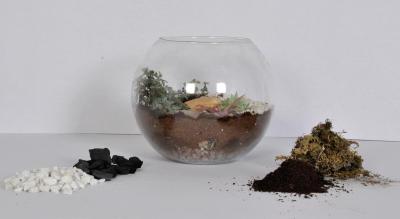 Terrarium and dish gardening workshop
