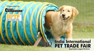 IIPTF, International Pet Festival 2018