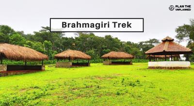 Brahmagiri Trek and Camping   Plan The Unplanned