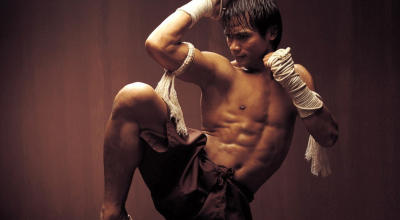 Dialogues With Cinema - Martial Arts