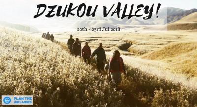 Dzukou Valley Trek In Nagaland | Plan The Unplanned