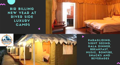 Luxury Camp New Year Celebration at Bir-Billing (India's best paragliding site)
