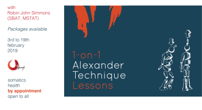 1-on-1 Alexander Technique Sessions