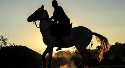 Horse Riding workshop