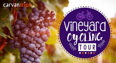 Couple Camping, Grape Stomping & Vineyard Cycling