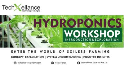 One Day Hydroponics Training Workshop