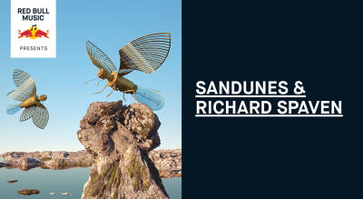 Red Bull Music Presents Sandunes & Richard Spaven   Mumbai