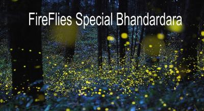 FireFlies Special Bhandardara | Trek India