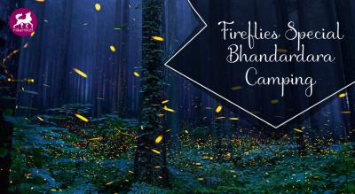 HikerWolf- Fireflies Special Bhandardara Camping