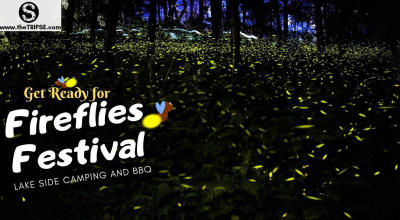 Fireflies Festival- Bhandardara