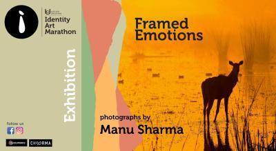 Framed Emotions