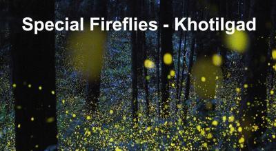 FireFlies Special Khotilgad | Trek India