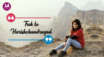HikerWolf -Trek to Harishchandragad
