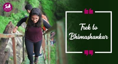 HikerWolf - Trek to Bhimashankar