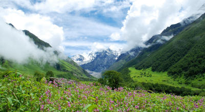 Trek To Valley Of Flowers, A UNESCO World Heritage Site | Wandertrails