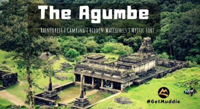 Monsoon special - The Agumbe Rainforest Camping | Muddie Trails