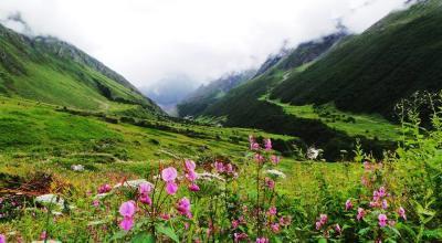 Valley of Flowers Trek | YHAI