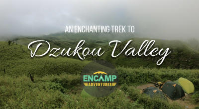 Dzukou Valley trek – Encamp Adventures