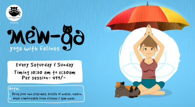 Mew-ga : Yoga with cats