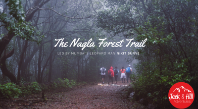 The Nagla Forest Trail