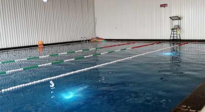Fitso SEALs Swimming Classes Manav Rachna Faidabad