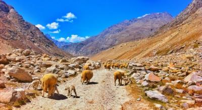 Spiti Valley Road Trip from Manali | Justwravel