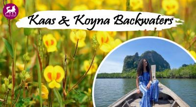 HikerWolf Trip to Kaas Plateau & Koyna Waterfall