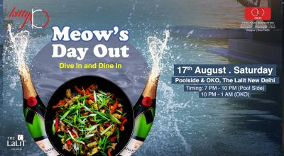 MEOW'S DAY OUT (THE LALIT NEW DELHI)