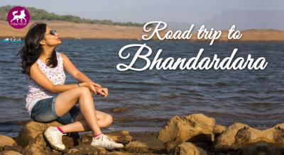 HikerWolf - Road Trip to Bhandardara