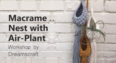 Macrame Nest with Air Plant