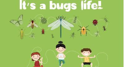 Bug Yoga