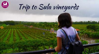 HikerWolf - Trip to Sula Vineyards